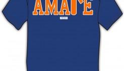 T-Shirt Amare Stoudemire
