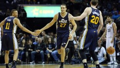 rudy-gobert-grizzlies