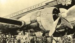 lakers-avion