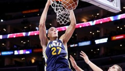 gobert-dunk
